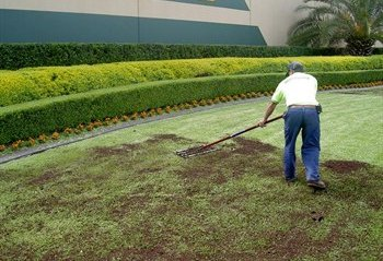 Top Dressing Your Lawn Part 1 San Jose Lawn Aeration