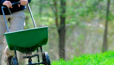 San Jose Lawn Aeration, Fertilizer